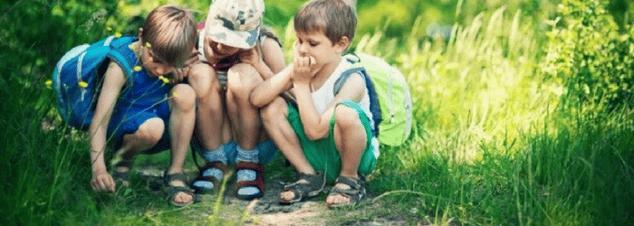 colegios-en-san-luis-potosi-convivencia-aprendizaje-familia.png